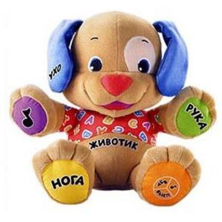 Интерактивная игрушка Fisher-Price Ученый Щенок русскоязычный